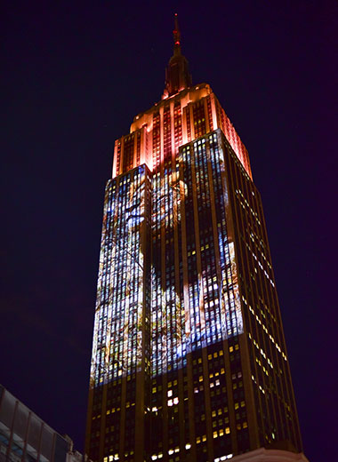 - August 1, 2015: Cecil the Lion projected onto south side of the Empire State Building in New York City.