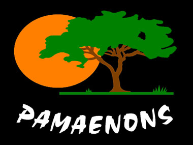 PAMAENONS - Pamaenons is a family owned & operated lion hunting destination in South Africa. Guests will be treated to accommodation in a unique and aesthetically set natural surrounding. Come and experience Africa at her best; The African sunset with a lion roaring.