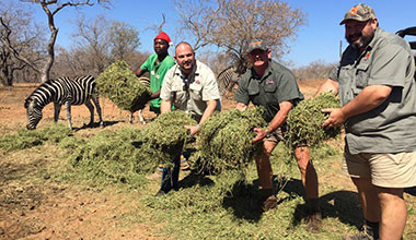 SAPA's relief efforts to drought stricken animals of Marloth Park